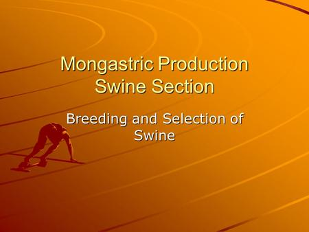 Mongastric Production Swine Section Breeding and Selection of Swine.