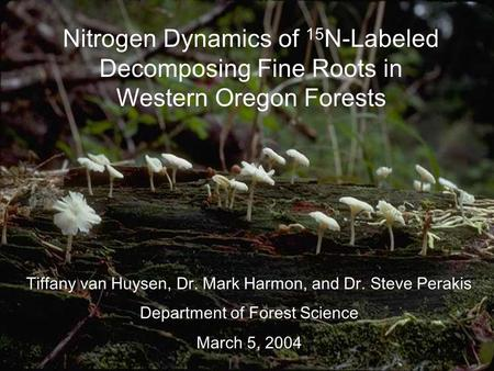 Nitrogen Dynamics of 15 N-Labeled Decomposing Fine Roots in Western Oregon Forests Tiffany van Huysen, Dr. Mark Harmon, and Dr. Steve Perakis Department.