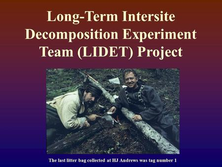 Long-Term Intersite Decomposition Experiment Team (LIDET) Project The last litter bag collected at HJ Andrews was tag number 1.