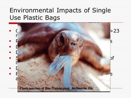 Environmental Impacts of Single Use Plastic Bags  Consumed in extremely high volumes (>23 million per year in SM)  Produced from non-renewable resources.
