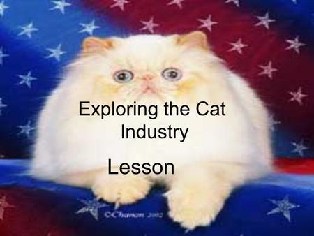 Exploring the Cat Industry Lesson. Interest Approach Display a litter box, cat litter, a pet carrier, cat brush, and a scratching post along with any.