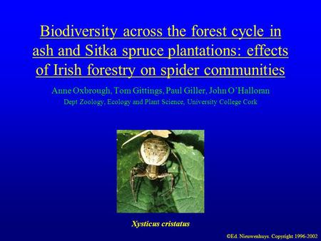 Biodiversity across the forest cycle in ash and Sitka spruce plantations: effects of Irish forestry on spider communities Anne Oxbrough, Tom Gittings,