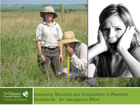 Assessing Structure and Composition in Remnant Grasslands: An Interagency Effort Insert Your Image Here © Insert Image Credit.
