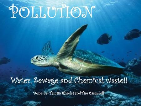 POLLUTION Water, Sewage and Chemical waste!! Done by- Tamsin Rhodes and Tim Campbell.
