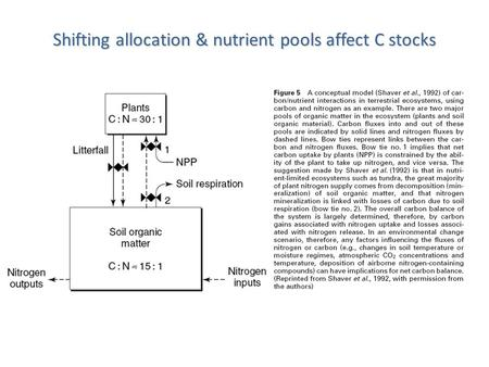 Shifting allocation & nutrient pools affect C stocks.