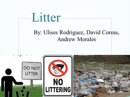 Litter By: Ulises Rodriguez, David Coreas, Andrew Morales.