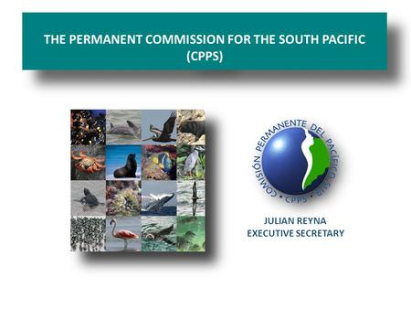 THE PERMANENT COMMISSION FOR THE SOUTH PACIFIC (CPPS) JULIAN REYNA EXECUTIVE SECRETARY.