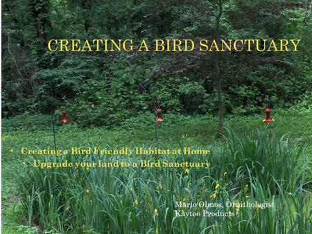 Creating a Bird Friendly Habitat at Home Upgrade your land to a Bird Sanctuary CREATING A BIRD SANCTUARY Mario Olmos, Ornithologist Kaytee Products.