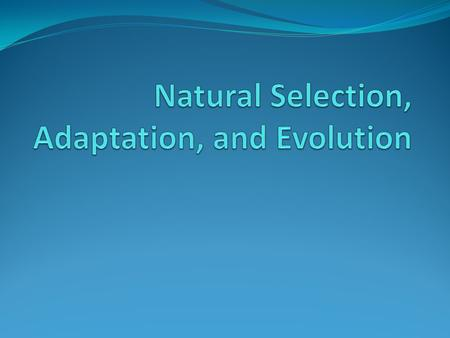 Natural Selection, Adaptation, and Evolution