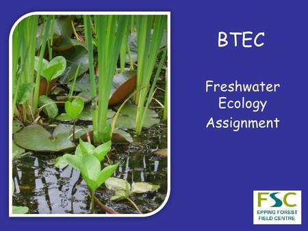 BTEC Freshwater Ecology Assignment. Interdependence All members of an ecosystem are connected in a network of relationships The success of the whole system.