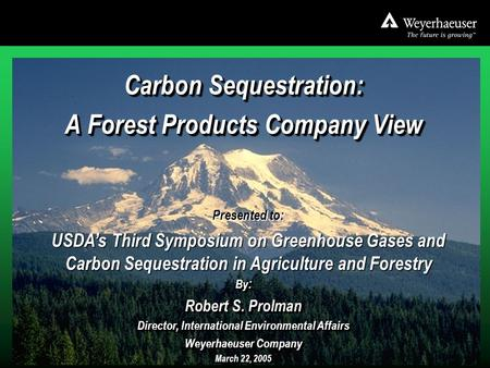 3-22-05 Baltimore USDA 3 rd GHG Symposium.ppt 1 Carbon Sequestration: A Forest Products Company View Carbon Sequestration: A Forest Products Company View.