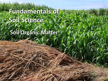 Fundamentals of Soil Science Soil Organic Matter.
