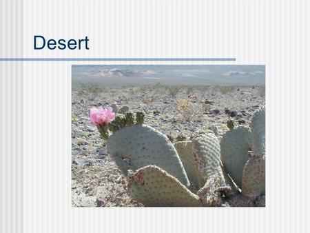 Desert. General definition deserts are areas that receive less than 25 cm of precipitation in one year and have little or no vegetation.