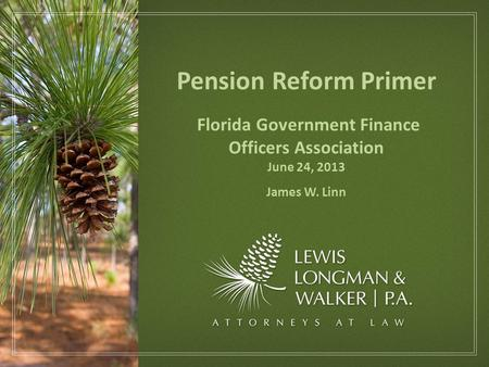 Pension Reform Primer Florida Government Finance Officers Association June 24, 2013 James W. Linn.
