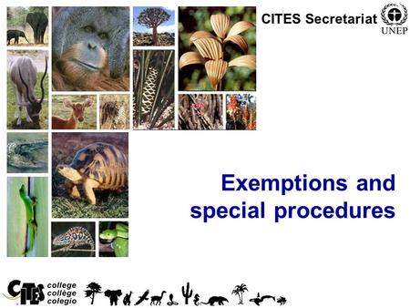 1 Exemptions and special procedures CITES Secretariat.