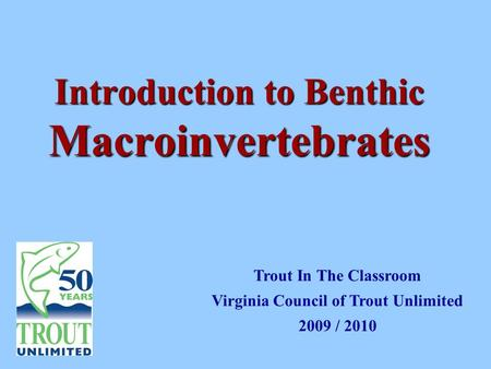 Introduction to Benthic Macroinvertebrates Trout In The Classroom Virginia Council of Trout Unlimited 2009 / 2010.