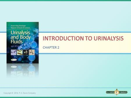 an introduction to the analysis of the urinary system Free urinary system papers diagnosis and treatment - introduction the urinary tract analysis of the human respiratory system - the human.