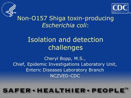 Non-O157 Shiga toxin-producing Escherichia coli: Isolation and detection challenges Cheryl Bopp, M.S., Chief, Epidemic Investigations Laboratory Unit,