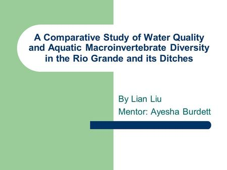 A Comparative Study of Water Quality and Aquatic Macroinvertebrate Diversity in the Rio Grande and its Ditches By Lian Liu Mentor: Ayesha Burdett.