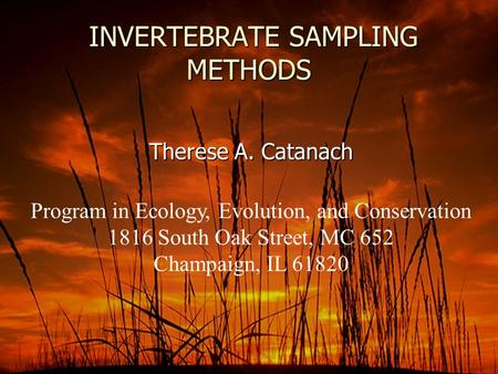 INVERTEBRATE SAMPLING METHODS INVERTEBRATE SAMPLING METHODS Therese A. Catanach Program in Ecology, Evolution, and Conservation 1816 South Oak Street,