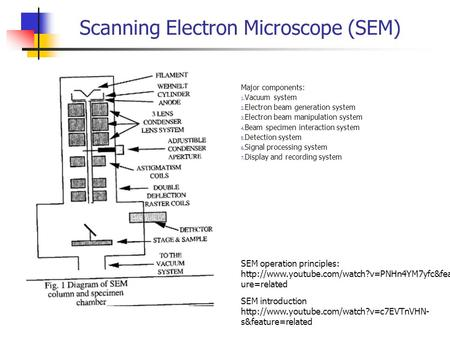 Scanning Electron Microscope (SEM) Major components: 1. Vacuum system 2. Electron beam generation system 3. Electron beam manipulation system 4. Beam specimen.