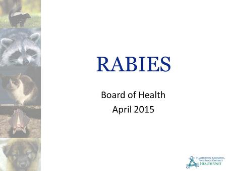 RABIES Board of Health April 2015. Rabies Disease Rabies is a highly contagious viral disease. The disease causes inflammation of the brain and spinal.