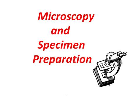 1 Microscopy and Specimen Preparation. T. Trimpe 2005