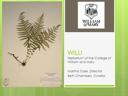 WILLI Herbarium of the College of William and Mary Martha Case, Director Beth Chambers, Curator.