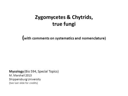 Zygomycetes & Chytrids, true fungi ( with comments on systematics and nomenclature) Mycology (Bio 594, Special Topics) M. Marshall 2013 Shippensburg University.