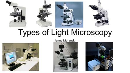 Types of Light Microscopy Jenna Moranski. Compound Light Microscope What can be viewed Transparent samples Dead specimen Must be small enough to fit on.