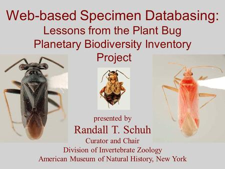 Web-based Specimen Databasing: Lessons from the Plant Bug Planetary Biodiversity Inventory Project presented by Randall T. Schuh Curator and Chair Division.