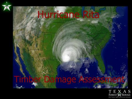Hurricane Rita Timber Damage Assessment. Initial Map of Potential Damage (SRS)