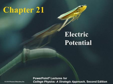 Chapter 21 Electric Potential.