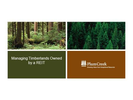 Managing Timberlands Owned by a REIT. 2 Key Components of a REIT  REIT Background: Form of C-corporation Created in 1960 Vehicle for the multitudes Pass-through.