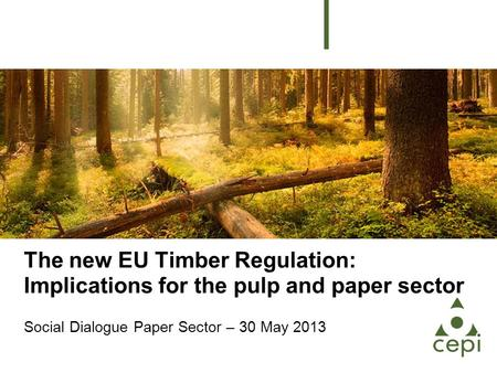 The new EU Timber Regulation: Implications for the pulp and paper sector Social Dialogue Paper Sector – 30 May 2013.