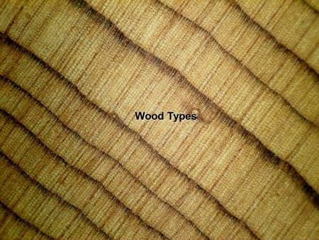 Wood Types. Coniferous Diffuse Porous Ring Porous.