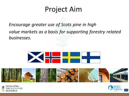 Encourage greater use of Scots pine in high value markets as a basis for supporting forestry related businesses. Project Aim.