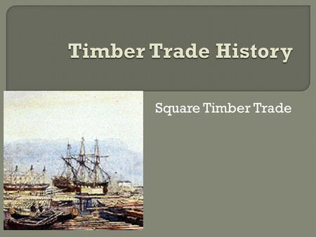 Square Timber Trade.  Wood was the staple of Canadian trade for much of the 19th century. Fueled by European demand, the timber trade brought investment.