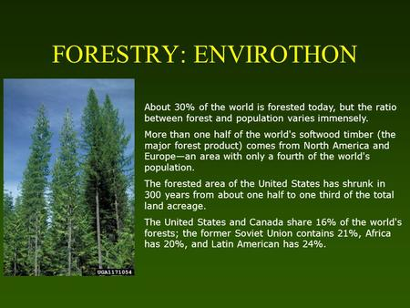 FORESTRY: ENVIROTHON About 30% of the world is forested today, but the ratio between forest and population varies immensely. More than one half of the.