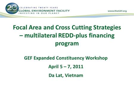 Focal Area and Cross Cutting Strategies – multilateral REDD-plus financing program GEF Expanded Constituency Workshop April 5 – 7, 2011 Da Lat, Vietnam.