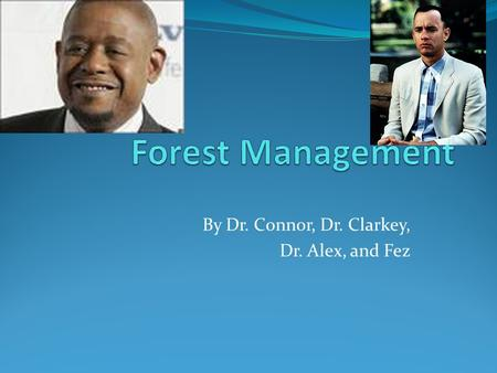 By Dr. Connor, Dr. Clarkey, Dr. Alex, and Fez. General Information 30% Foresters manage forests through forestry. Boreal forests are everywhere!