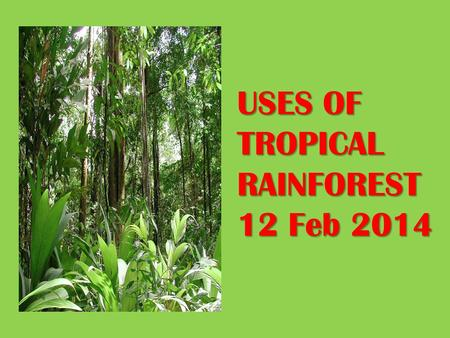 USES OF TROPICAL RAINFOREST 12 Feb 2014. Uses of Tropical Rainforest 1.Water Catchment 2.Green lungs of the earth 3.Source of timber 4.Medical application.