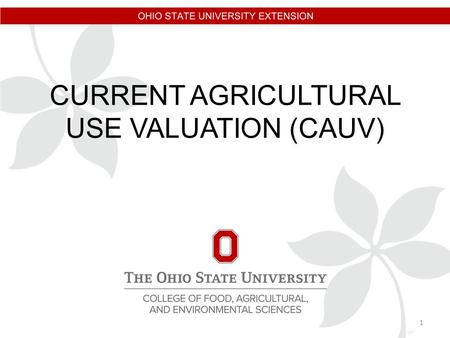 CURRENT AGRICULTURAL USE VALUATION (CAUV) 1. LARRY R. GEARHARDT FIELD SPECIALIST, TAXATION OHIO STATE UNIVERSITY EXTENSION 810 FAIR ROAD SIDNEY, OHIO.