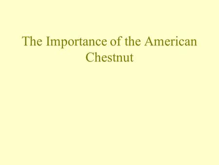 The Importance of the American Chestnut. Student Objectives Sunday, May 03, 2015 After today's lesson, you will be able to: Gain an understanding of the.