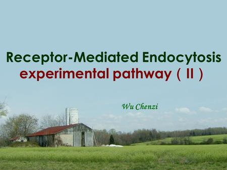 Receptor-Mediated Endocytosis experimental pathway ( II ) Wu Chenzi.