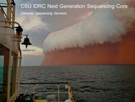 CSU IDRC Next Generation Sequencing Core Genomic Sequencing Services.