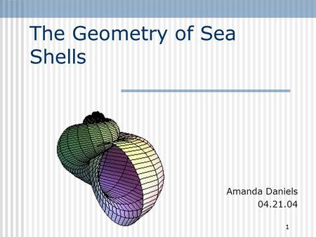 1 The Geometry of Sea Shells Amanda Daniels 04.21.04.