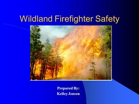 Wildland Firefighter Safety Prepared By: Kelley Jensen.