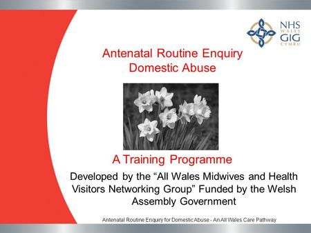 <strong>Antenatal</strong> Routine Enquiry Domestic Abuse