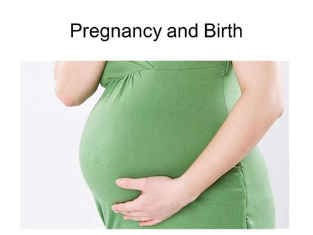Pregnancy and Birth. THE BEGINNING OF THE LIFE CYCLE.
